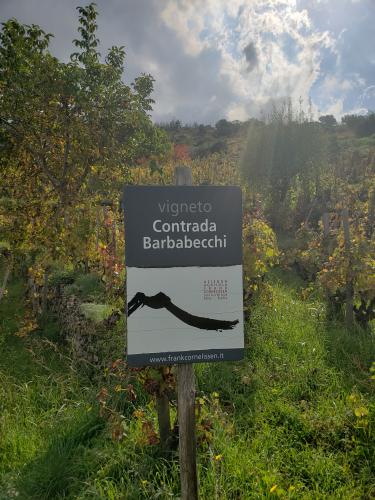 Contrada Barbabecchi